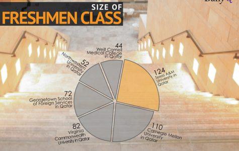 Education City Student Demographics 2013-14
