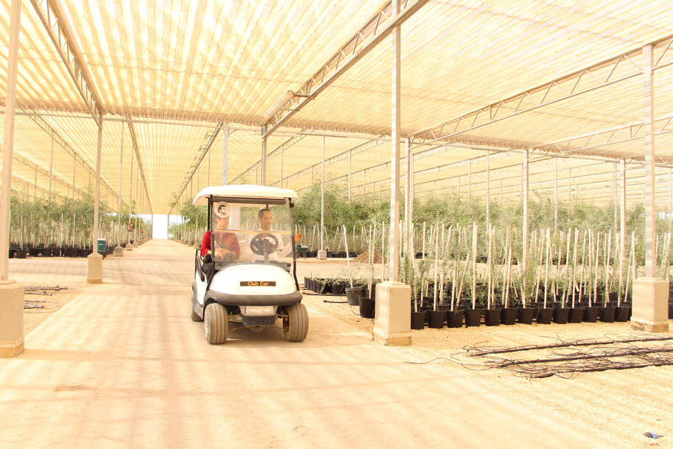 The+plant+nursery+is+currently+open+for+visitors.+In+order+to+go+on+a+tour%2C+visitors+must+apply+on+The+Quranic+Botanic+Garden%27s+official+website.