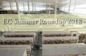 Education City Summer Roundup 2018