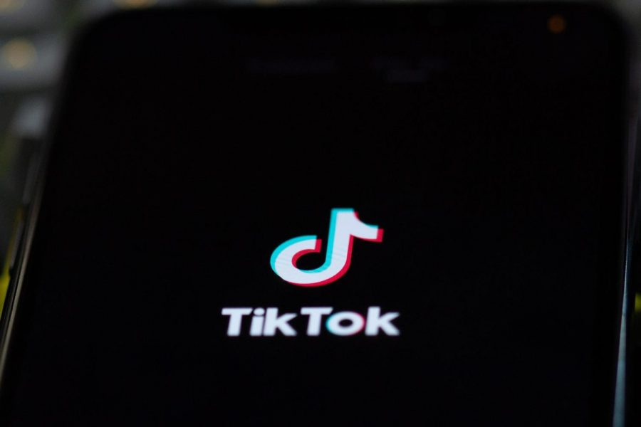 TikTok Activating Youth Voices in Politics